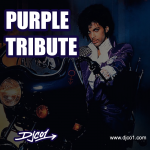 Purple Tribute – Remembering Prince